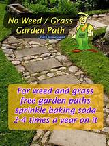 For weed free garden path, sprinkle baking soda 2 = 4 times a year ...