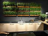 ... cooking any meal developing your own indoor kitchen garden can improve
