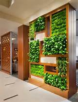 tips for growing automating your own vertical indoor garden