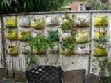 commmunity gardening: Vertical Gardening Update II