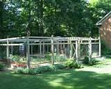 Дизайн огорода и грядок с пряными ...