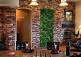 Unique-house-indoor-vertical-garden-ideas
