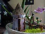 Indoor Fairy Garden | fairy garden ideas | Pinterest