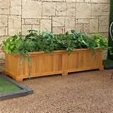 rectangular cedar wood aster patio planter box planters at hayneedle