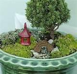japanese fairy gardens japanese garden fairy garden ideas