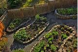 ... Flower Beds, 20 Creative and Eco Friendly Backyard Ideas - 1 - Pelfind