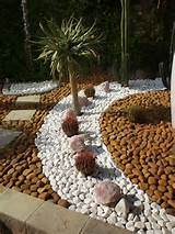 Pebble Gardens | NAMIB GARDEN Cactus Nursery – Garden Design