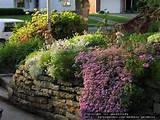 Garden Design: gardenwife picture (Time-Lapse of Island Bed in Front ...