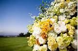 floral butter lush romantic garden roses cymbidium orchids romantic