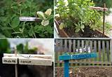Creative Garden Label Ideas | So Creative Things | Creative DIY ...