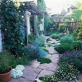Drought-Tolerant Landscaping Ideas