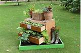Mis-matched wellies and an old chest become a raised planter. Wonder ...