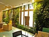 garden ideas indoor vertical garden indoor garden room design 800x600