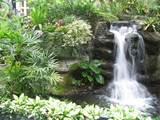 garden waterfall design 9 e1281724620820 Waterfall enhances the beauty ...