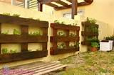 12 Paletes de Madeira que são Jardins Verticais