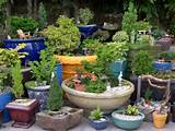container gardening ideas allen smith