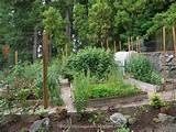 garden fence ideas to keep animals out