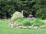 Perennial garden | Gardens | Pinterest