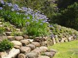 ilandscape products rock wall and garden alexander landscapes