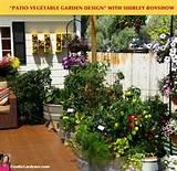 Patio Vegetable Garden Container Ideas | CDxND.com - Home Design in ...