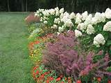 perennial flower garden design plans landscaping gardening ideas