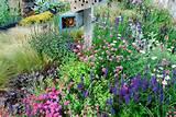 beautiful lavender pinky flowers wooden mailbox flower garden design