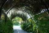 arch walkway to ceremony site wedding ideas pinterest