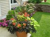 short on space to plant a garden try a container garden perfect for