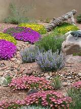 High Country Gardens | Landscaping Ideas | Pinterest