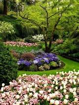 English garden ideas – Munich | English Garden | Pinterest