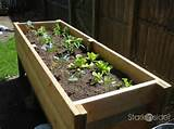DIY Project: Vegetable Planter Box (plans, photos) | Stark Insider