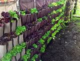 up how to design vertical gardens for tiny spaces inhabitat green