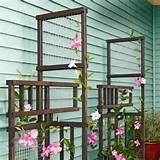 Trellis | Garden ideas | Pinterest