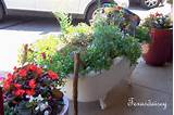 Texasdaisey Creations: Container Garden Ideas