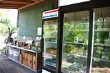 Garden of Ideas CSA: Farm Stand is open