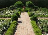... formal garden french garden hedge herringbone knot garden path urn