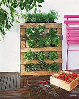 innovative diy pallet vertical garden ideas easy diy and crafts
