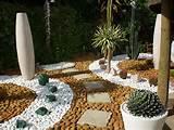 jardines desertico en monterrey