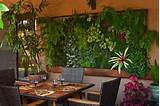 Unique Indoor Garden Ideas - Modern Magazin