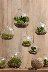 Grow indoor plants in hanging terrariums or pods. You can create ...