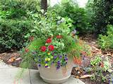 container small garden ideas pictures container small garden ideas