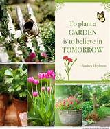Gardening + Flowers | DIY Garden Ideas | Pinterest