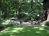 paisagismo e jardinagem residencial plantas fotos rei da verdade