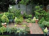 ideas for a good conifer garden