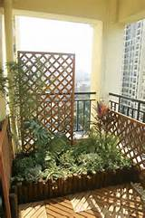 looking for a great apartment with a balcony austin apartment