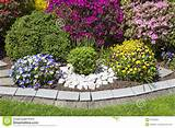 colorful landscaped flower garden royalty free stock photo image