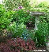 Landscaping Ideas > Gardening on the Coast | YardShare.com