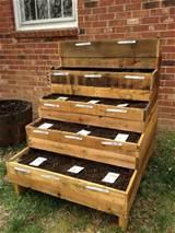 Pallet Herb Garden | 101 Pallets