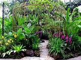 Singapore-Orchid-Garden-Orchid-BIrdcage | Tropical Gardens | Pinterest