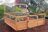 Raised garden beds kits ideas | jamesgathii.com